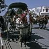 afghanistan_herat_pferdetaxi_857x1280